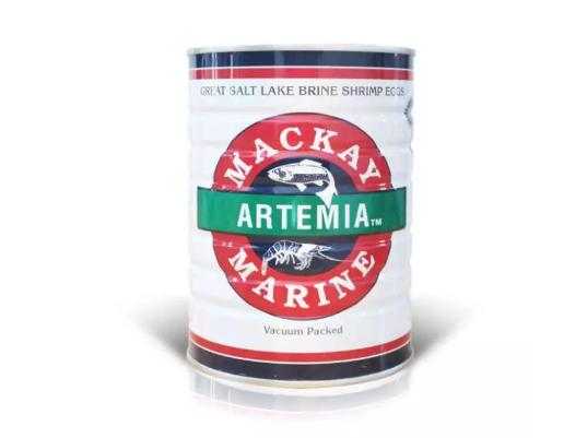 Artemia Mackay Putih Pakan Benur dan Ikan