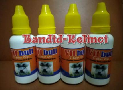 Vitamin untuk bulu Kelinci (Vitbull)
