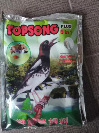 Pakan burung top song