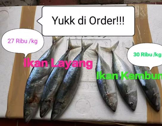 Menjual hasil laut ! kepiting, cumi, udang dan ikan lainnya