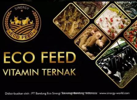 VITAMIN TERNAK ECOFEED
