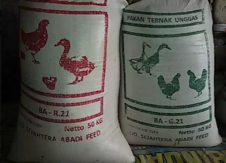 Pakan Ternak Untuk Bebek, Ayam, Petelur, Pedaging dan Unggas
